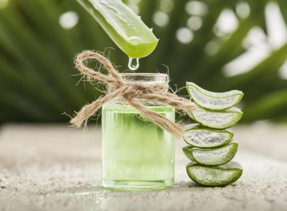 Aloe You VERA MUCH! LIFESTYLE, Uroda - Produkty SKIN NATURAL zawierają ekstrakt z Aloe Vera Barbadensis, który pochodzi z biologicznie kontrolowanych upraw w Meksyku, a jego uzdrawiającą moc poznano już 5 000 lat temu!